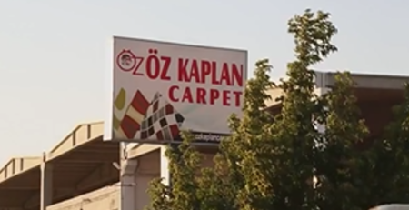 Oz Kaplan Carpet